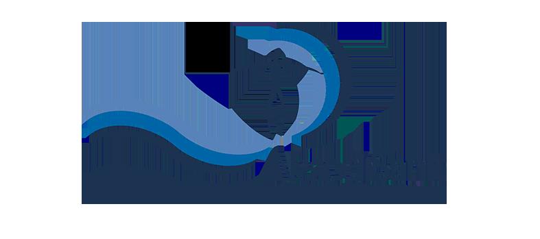 Neapolisanit